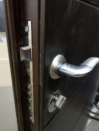 Дверь входная Стандарт Х 001