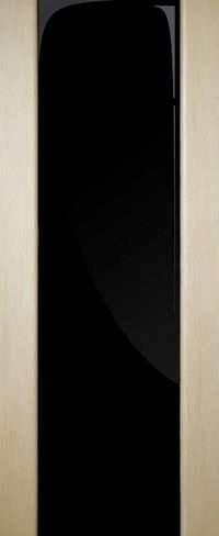 Межкомнатные двери Премьера ПО (триплекс черный)