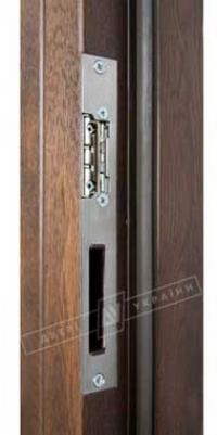 Двери Украины Флеш 73 мм