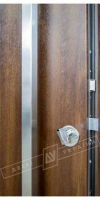 Двери Украины Флеш 73 ручка скоба
