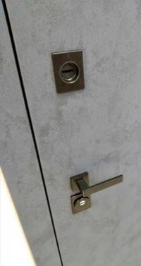 Входная дверь Steelguard Remo MAXIMA