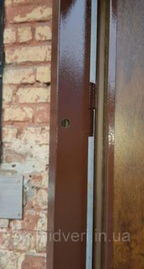 Входная дверь РЕГИОН Х001 М