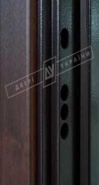 Дверь входная Двери Украины БС 3 Кейс, KALE