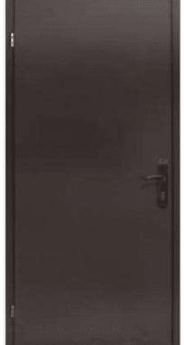 Входные двери Steelguard 161 RAL 8019