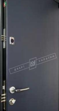 Дверь входная Двери Украины Салют Металл / Флеш, RICCARDI